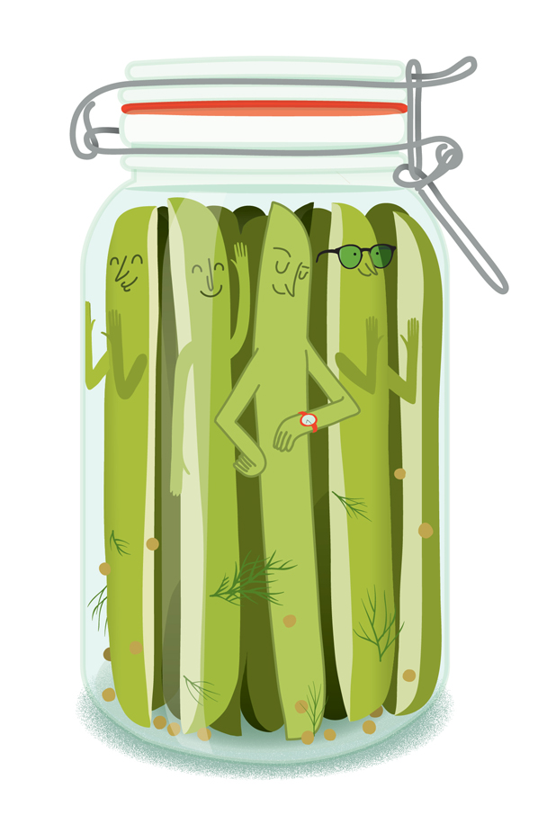 Fermentation - Illustration de cornichons dans un pot